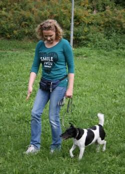 Beratung für Hundeerziehung